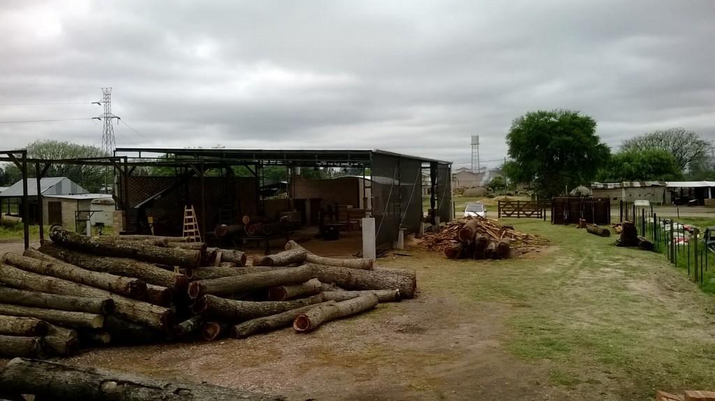 aserradero carpinteria rural madera dura presidencia de la plaza chaco1