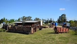 instalaciones rurales y carpinteria