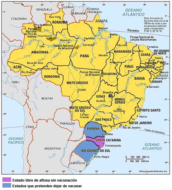 ganaderia - mapa brasil produccion de ganado bovino vacunacion