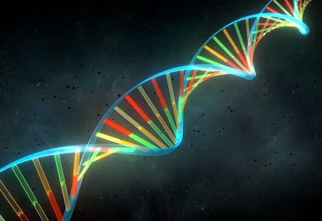 ganaderia de precision - genomica seleccion asistida por marcadores la tecnologia que se viene
