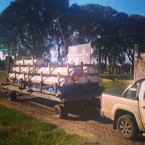 comederos bateas de madera o tambores plasticos
