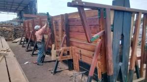 manejo del rodeo bovino