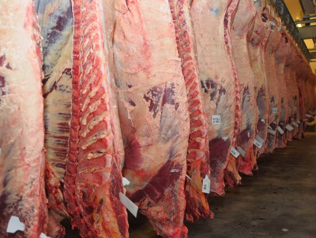 """Carne: """"La Argentina volverá a ser una potencia exportadora"""""""