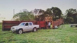 madera dura de urunday instalaciones ganaderas